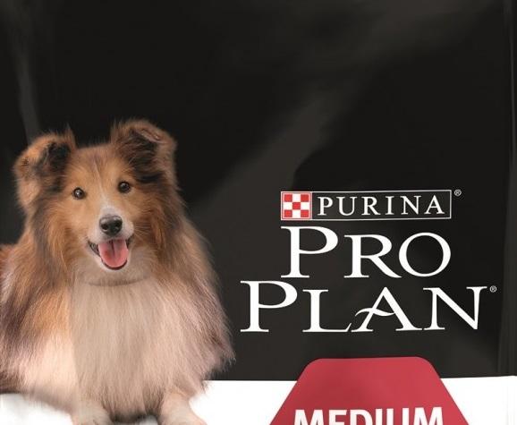 Корм для кошек и собак Pro plan
