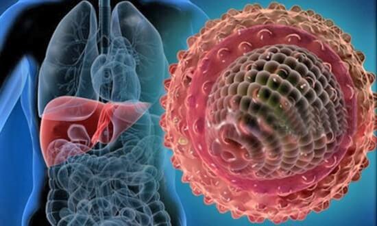 Что нужно знать о гепатите С