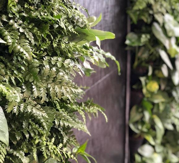 Гармоничный процесс озеленения